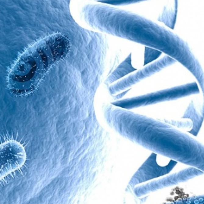 Metagenómica la microbiología del futuro