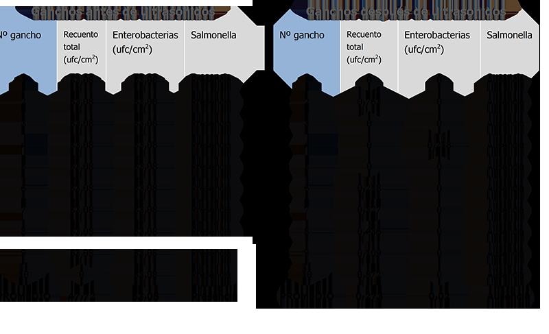 Tabla 1. Resultados de microorganismos indicadores y Salmonella en ganchos de vivo, durante la producción, antes y después de pasar por el equipo de ultrasonidos