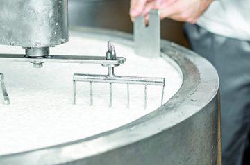 Limpieza y desinfección en la industria quesera
