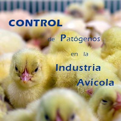 CONTROL DE PATÓGENOS EN LA INDUSTRIA AVÍCOLA