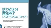 Eficacia de biocidas frente a Campylobacter spp.